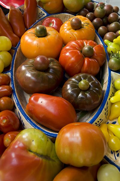 2009 KC Tomato Tasting