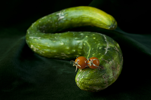 Cucumber charmer