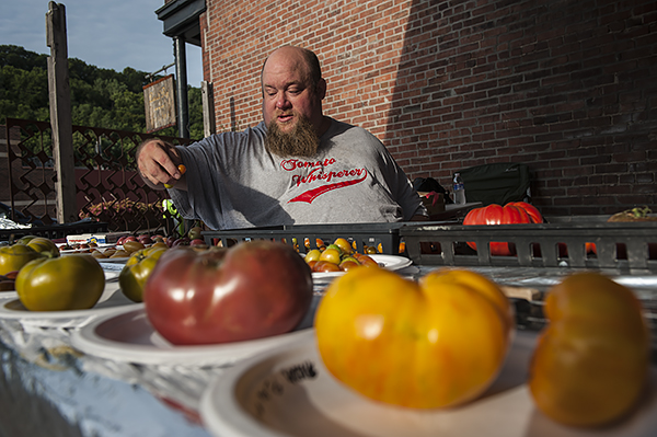 Tomato guru James Worley organizes the varieties before the crowds arrive.